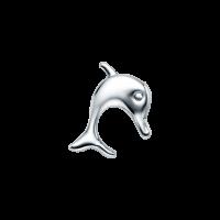 Silver Dolphin